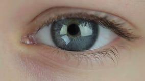 Solamente dinero en los ojos almacen de video