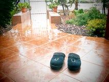 Solamente en la lluvia Fotografía de archivo libre de regalías
