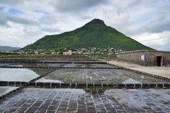 Solankowe niecki przy Losem Angeles Wysyłający Du Sel przy długouszką, Mauritius Obraz Royalty Free