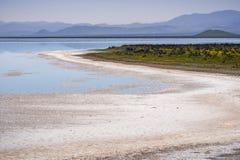Solankowi kryształy na linii brzegowej chwilowy Sodowany jezioro, Carrizo Prosty Krajowy zabytek, Środkowy Kalifornia zdjęcia stock