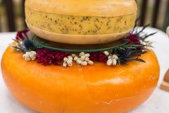 Solankowy ślubny tort od sera Trzy serowej głowy jako ślubny tort Obrazy Stock
