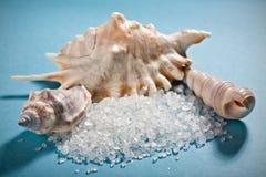solankowy błękit morze łuska trzy Fotografia Royalty Free