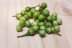 Solanum μούρων της Τουρκίας torvum Sw σε ένα ξύλινο πάτωμα Στοκ φωτογραφία με δικαίωμα ελεύθερης χρήσης