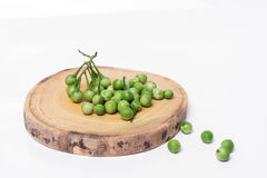 Solanum μούρων της Τουρκίας torvum Sw Στην άσπρη ανασκόπηση εκλεκτικός Στοκ Φωτογραφία