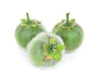 Solanum, Bolo Maka, islated sur le fond blanc Photo stock