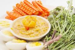 Solanum ferox ή τριχωτός-η εμβύθιση τσίλι μελιτζάνας Στοκ Εικόνες