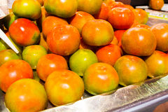 Solanum lycopersicum Fresh red and green tomatoes. A Royalty Free Stock Photography