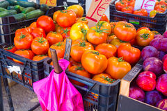 Solanum lycopersicum Fresh red and green tomatoes. Z a a Stock Photography