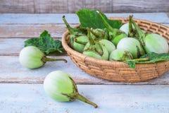 Solanumlaciniatum i korgen fotografering för bildbyråer