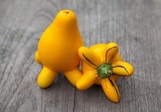 Solanummammosumfrukt arkivfoton