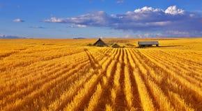 Solar autumn midday in Montana Stock Photo