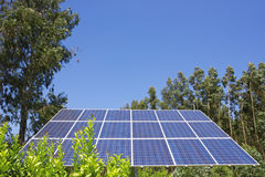 Solar cell. Against of green trees Royalty Free Stock Photography