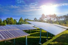 Solar cell panels that generate electricity in morning sun. Solar cell panels that generate electricity in the morning sun royalty free stock photo