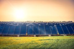 Solar cell park on a field Stock Images