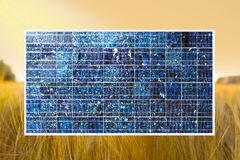 Solar cell on wheat field stock photos