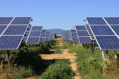 Solar Cells. On a green field Stock Image