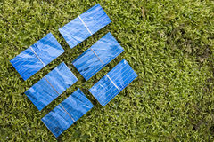 Solar cells on the moss Royalty Free Stock Images