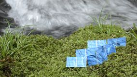Solar cells on a moss Royalty Free Stock Photo