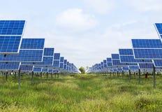 Solar cells alternative renewable energy from the sun Stock Photos