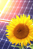 Solar cells and sunflower Royalty Free Stock Photography