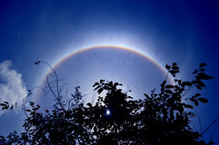 Solar corona, ring around the sun background. The solar corona, ring around the sun background Stock Photo