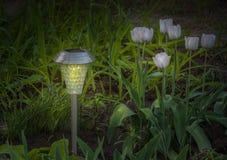 Solar de la lámpara del jardín accionado en un jardín de la primavera Imagen de archivo