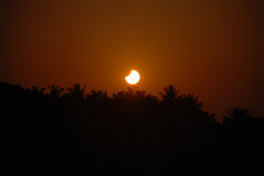 Solar Eclipse. Early morning Solar Eclipse over Bangalore (India) city Royalty Free Stock Photos