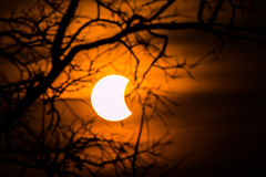 Solar eclipse astronomical Scientific background Royalty Free Stock Images