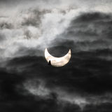 Solar eclipse and bird Stock Photos