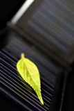 Solar energy. Green leaf on a small solar panel royalty free stock images