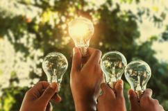 Solar energy concept hand group holding light bulb. In nature royalty free stock photos