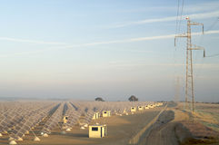 Solar energy field. Sunrise on a large group of photovoltaic panels and a power line Royalty Free Stock Image