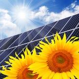 Solar energy panel and sunflowers. Solar energy panels on a sunflower field against sunny sky Royalty Free Stock Photography