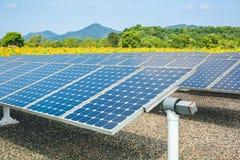 Solar energy panels and sunflower farmland stock images