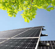 Solar energy panels. With tree Stock Images