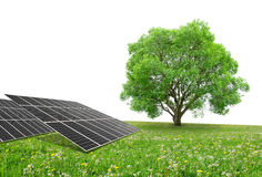 Solar energy panels with tree Stock Photo