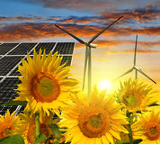 Solar energy panels with wind turbines. In sunflower field Royalty Free Stock Image