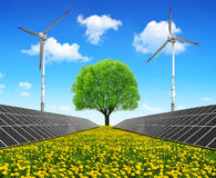 Solar energy panels with wind turbines and tree Stock Photography