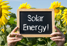 Solar energy sign and sunflowers Stock Photography