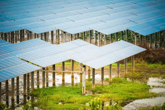 Solar energy in swamp Stock Images