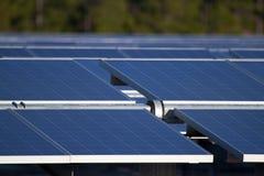 Solar Farm. Central Florida power generation farm's solar panels point toward the early morning sun. The panels are mounted on moving racks, that follow the sun Stock Photo