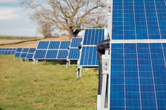 Solar Farm Park. Panels In Green Field, Sustainable Renewable Energy. Stock Photography