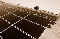 Solar Farm Producing Energy Stock Photo