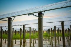 Solar farm in sunset Stock Photos