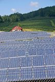 Solar Farm (v) Stock Images