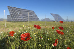 Solar field Stock Photo