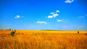 Solar field. On these fields always appear brilliant ideas Royalty Free Stock Photo