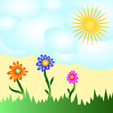 Solar flower card. Royalty Free Stock Image