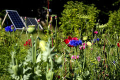 Solar garden Stock Images