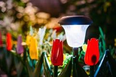 Solar Garden Light, Lantern In Flower Bed. Garden Design. Solar Royalty Free Stock Images
